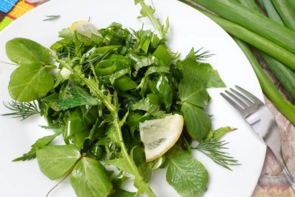 Зеленый салат с листьями одуванчика и крапивы