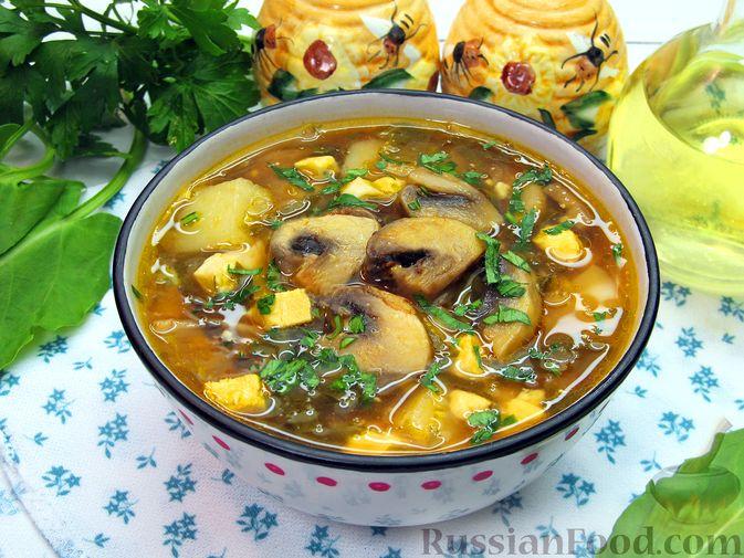 Куриный суп со щавелем и шампиньонами