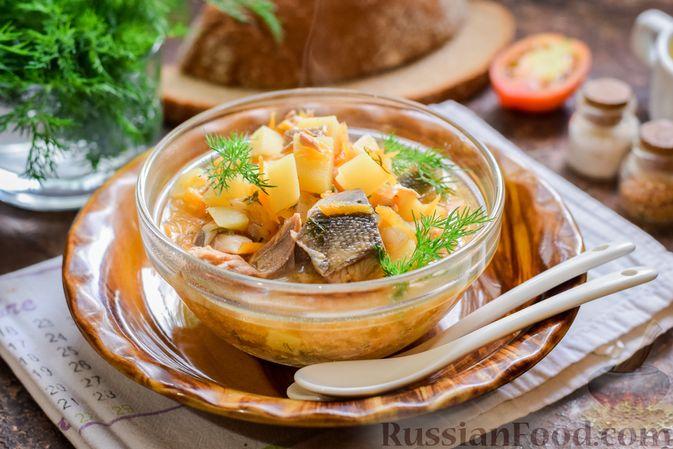 Суп из консервированной горбуши с плавленым сыром