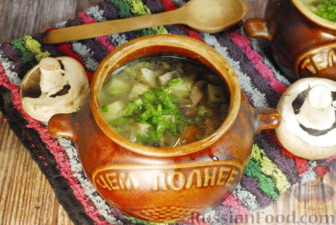 Грибной суп с сельдереем (в горшочках)